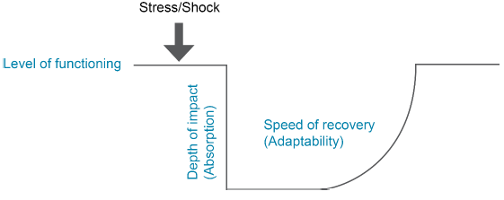Figure 2 - Two dimensions of resilience: Absorption and Adaptability